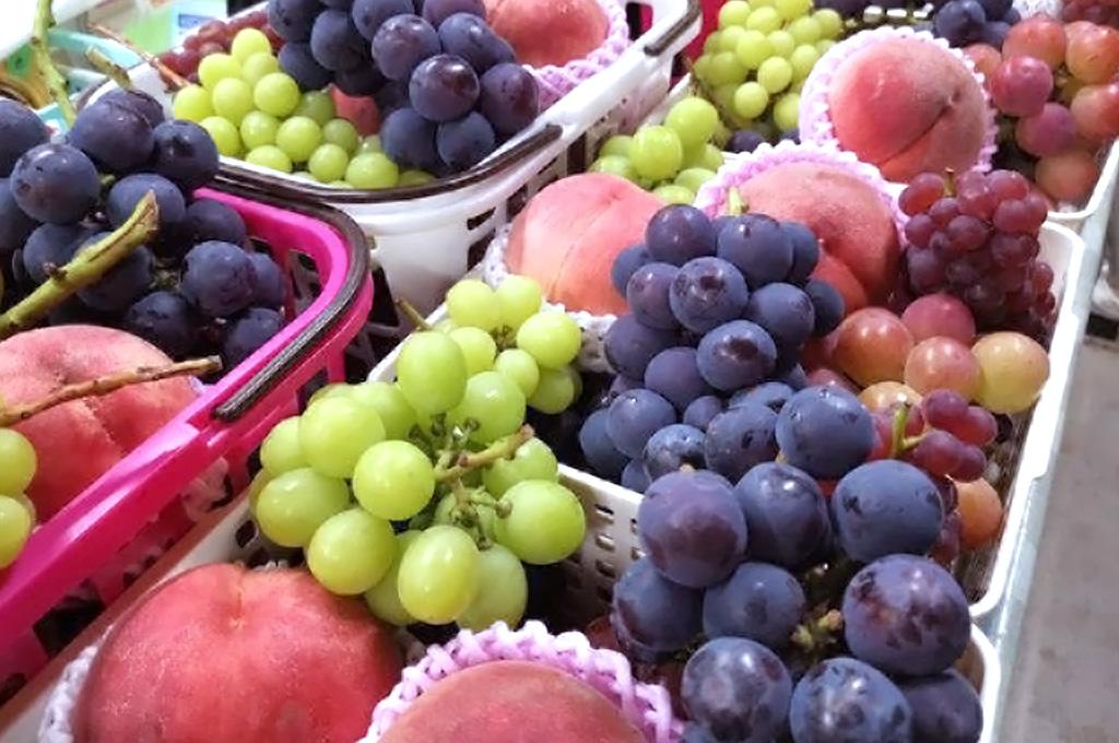 黒ぶどうや季節のフルーツを売店で味わえます。