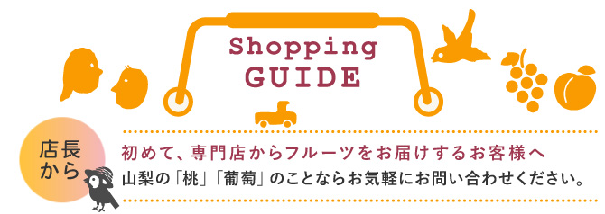 ショッピングガイド:はじめて専門店からフルーツをお届けするお客様へ
