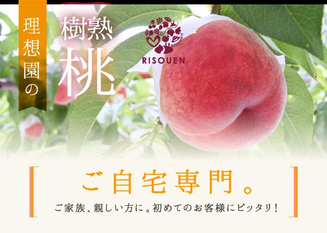 理想園の「樹熟桃」ご自宅専門